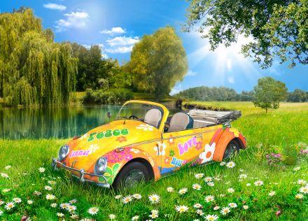 Retro Volksie Summer 2